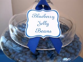 Blueberry Jelly Beans