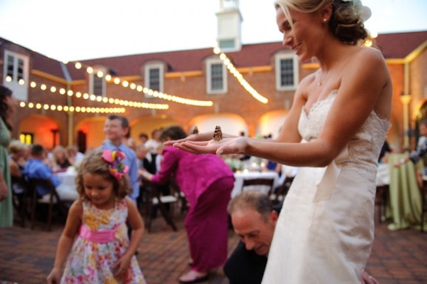 Butterflies at Wedding