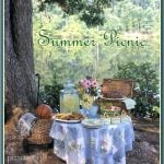 Summer Picnic for Father's Day