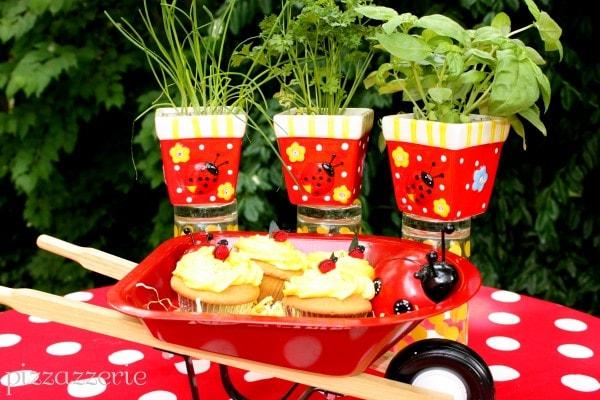Ladybug Party Wheelbarrow
