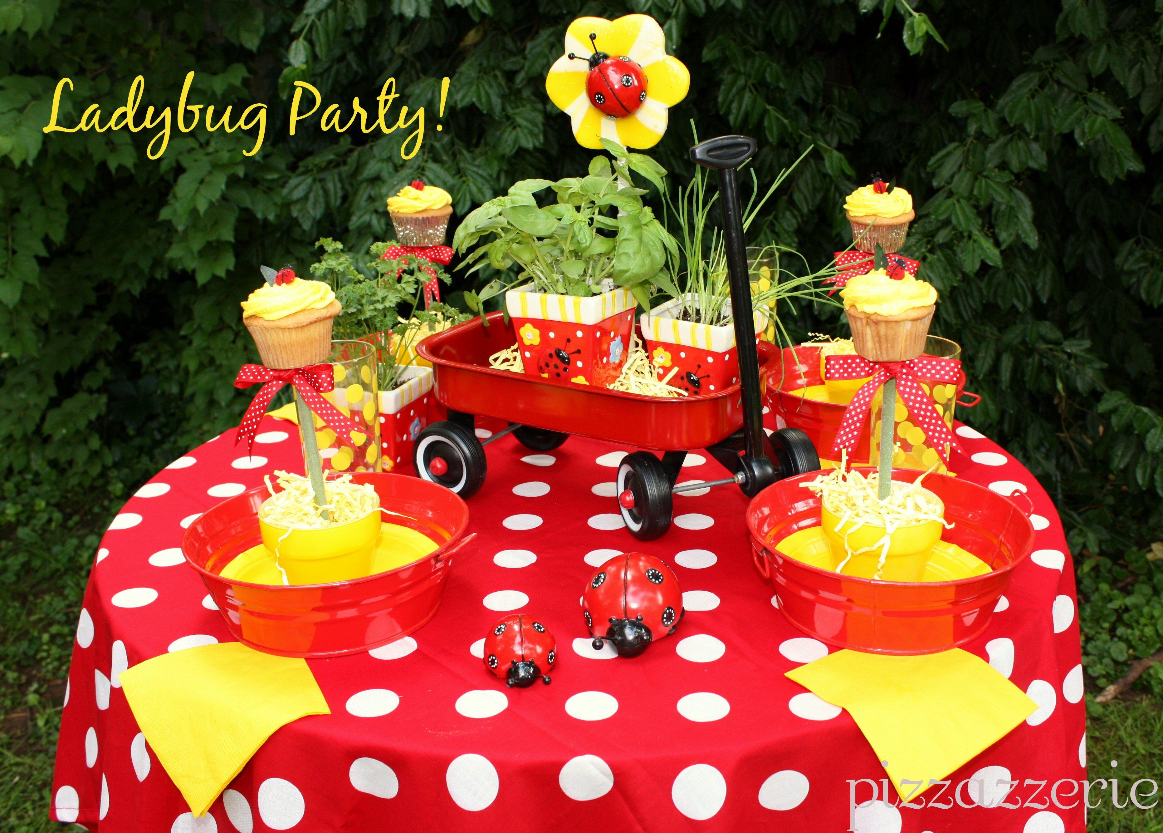 Ladybug Garden Party!