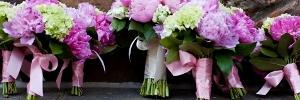 Blush Pink + Grey Memphis Wedding