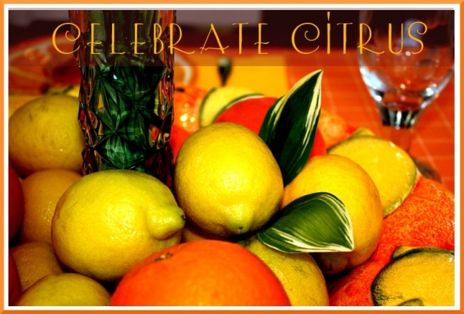 Lemon/Orange Citrus Table