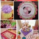 pink purple lime ladybug birthday party
