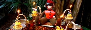 Jungle Monkey Dinner Party