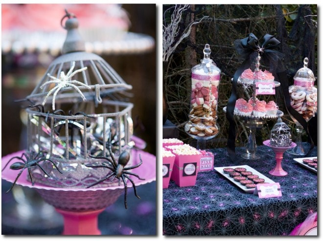 halloween pink spider decorations party