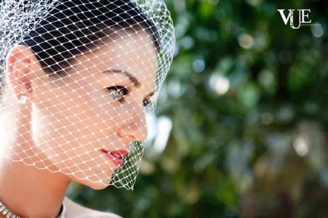 birdcage veil