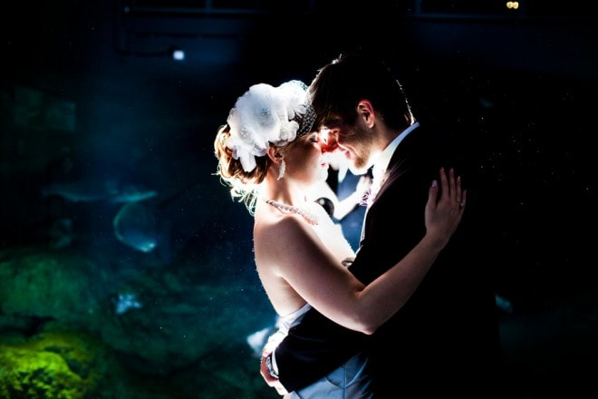 wedding aquarium