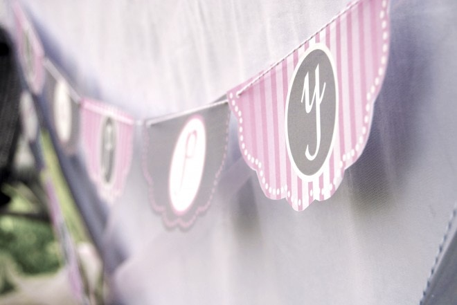 pink birthday party banner