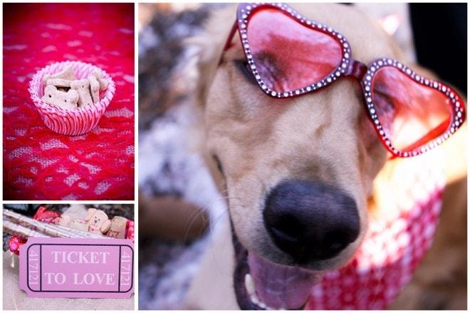 puppy valentine's party
