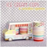 Party Finds: Ice Cream Cups + Wooden Spoons