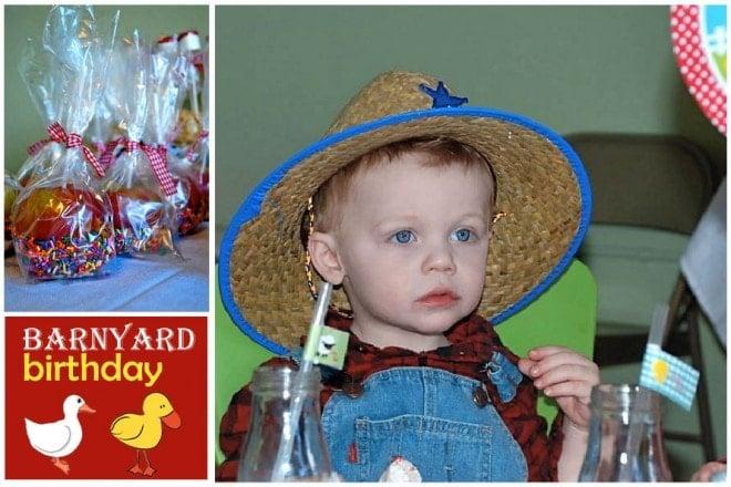 barnyard birthday party