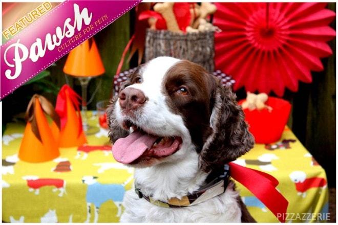 pawsh puppy party birthday