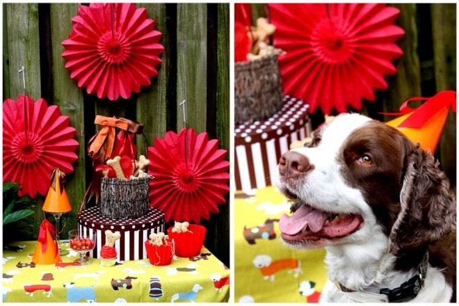 pawsh puppy dog birthday party