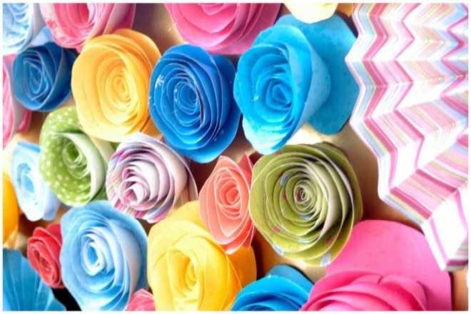 colorful paper flower rosettes