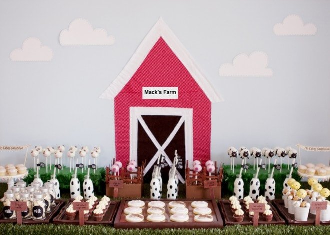 Farm Yard Birthday Party