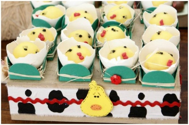 country birthday party 2