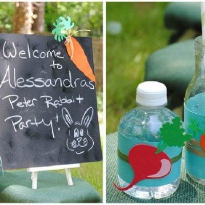 peter rabbit birthday party 2