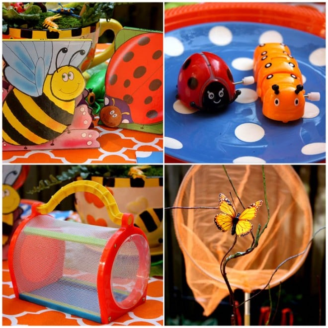 bug birthday party picture 5