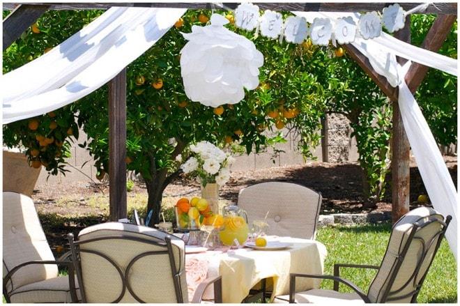 lemon ladies luncheon party picture 8