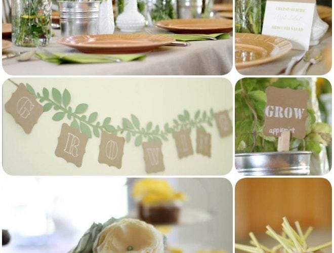 Rustic Garden Themed Baby Shower