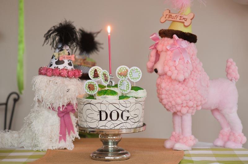 Dog Themed Kids Birthday 042