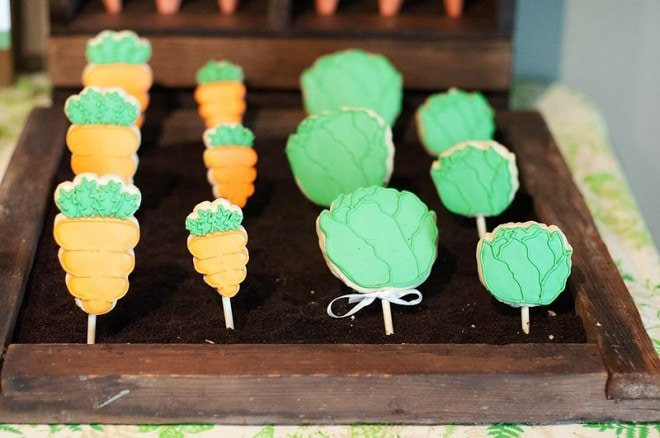 Garden themed cookie pops for birthday party