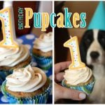 Happy Birthday Pupcakes Recipe!