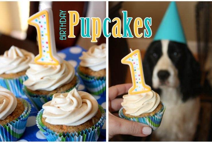 Happy Birthday Pupcakes: Dog Cupcake Recipe!