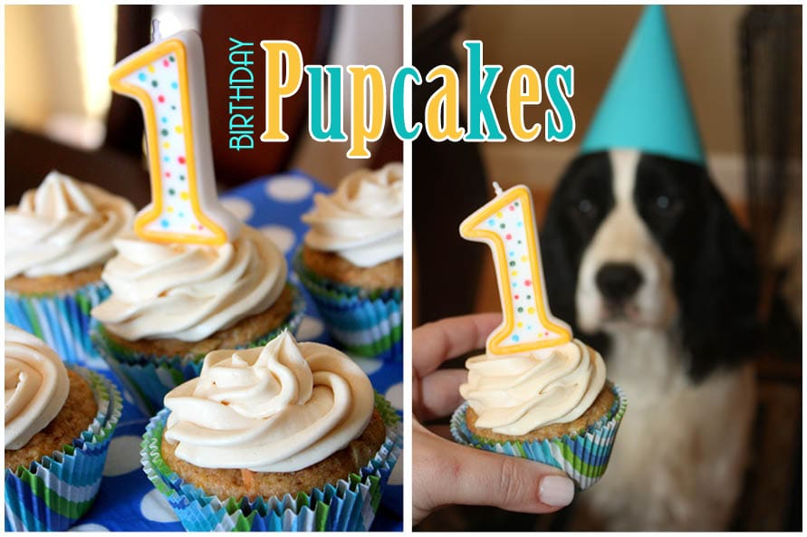 Happy Birthday Pupcakes: Dog Cupcake Recipe!