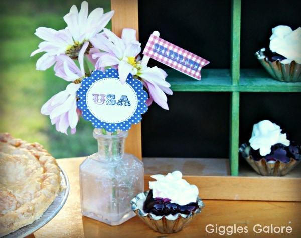 USA Blueberry Tassie_GG