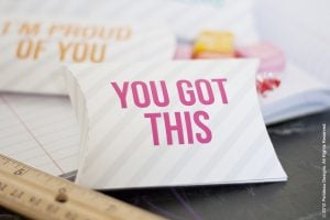 lunchbox free printable pillow box