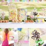 Summer Fairy Birthday Party!