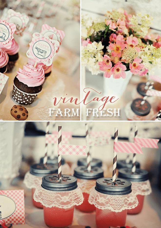 Vintage Farm Fresh Birthday Party Pizzazzerie
