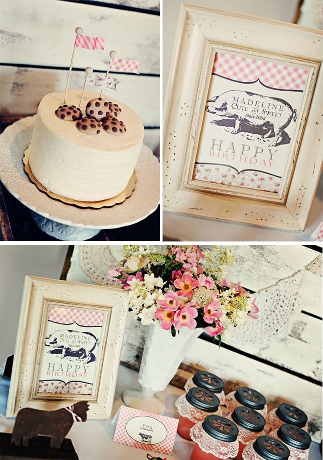 vintage farm fresh birthday party 5