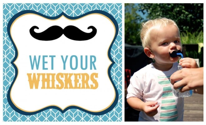 Wet Your Whiskers Drink Station