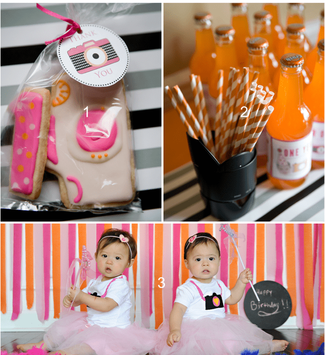 Twin's Photography Themed 1st Birthday Party