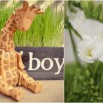 Spring Giraffe Baby Boy Shower on Pizzazzerie.com