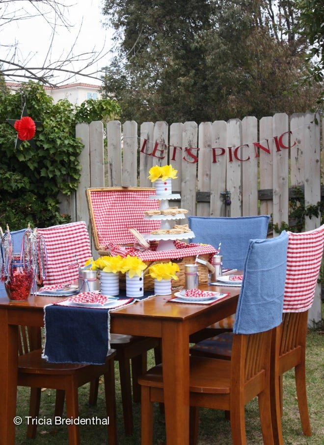 Host A Patriotic Picnic Party Pizzazzerie