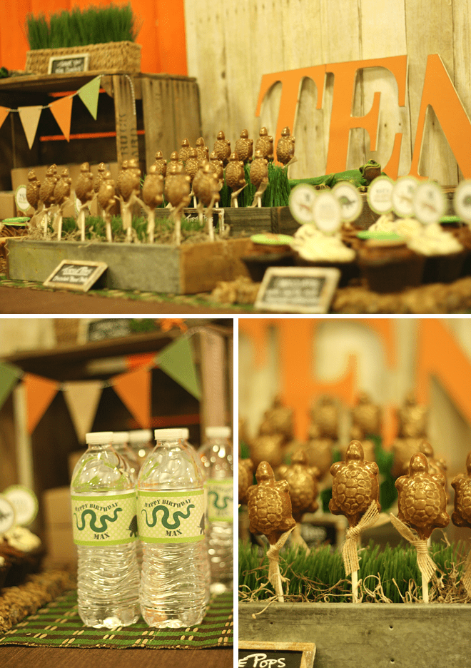 Creepy Crawly Reptile Party Photos + Inspiration!