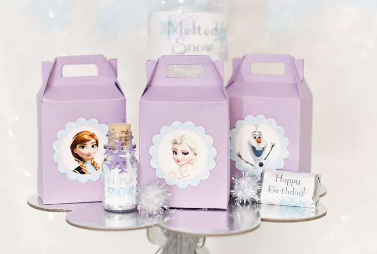 Frozen Themed Birthday Party!
