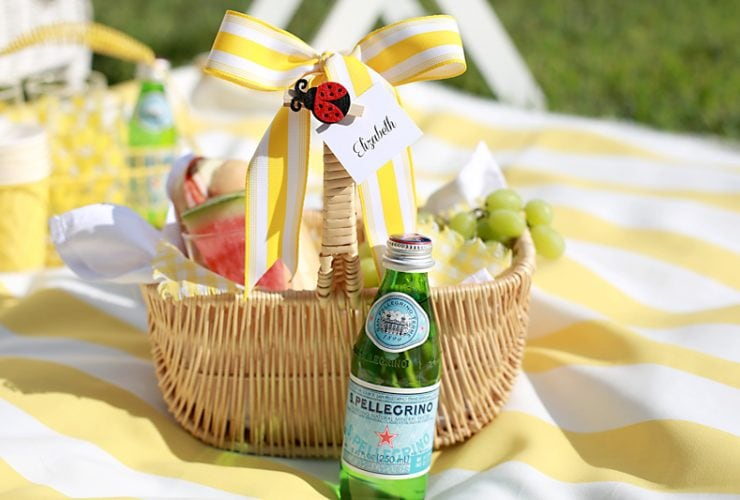 Summer Fun Backyard Picnic Party
