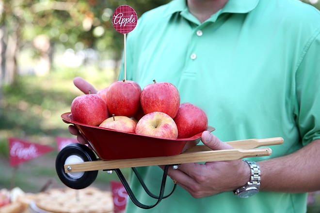 Throw an apple themed party this fall!