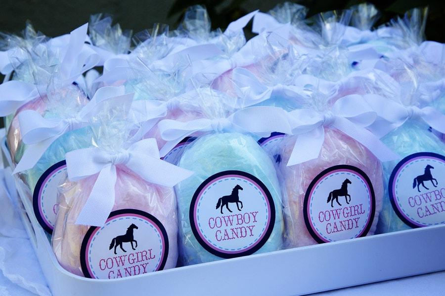 Cotton Candy Pony Party favors!