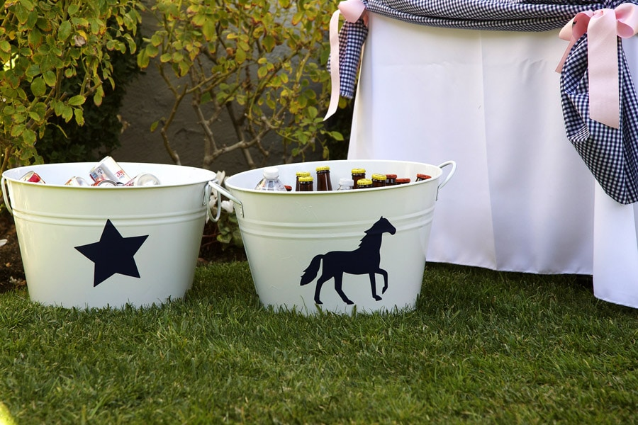 Horse Party Ideas!