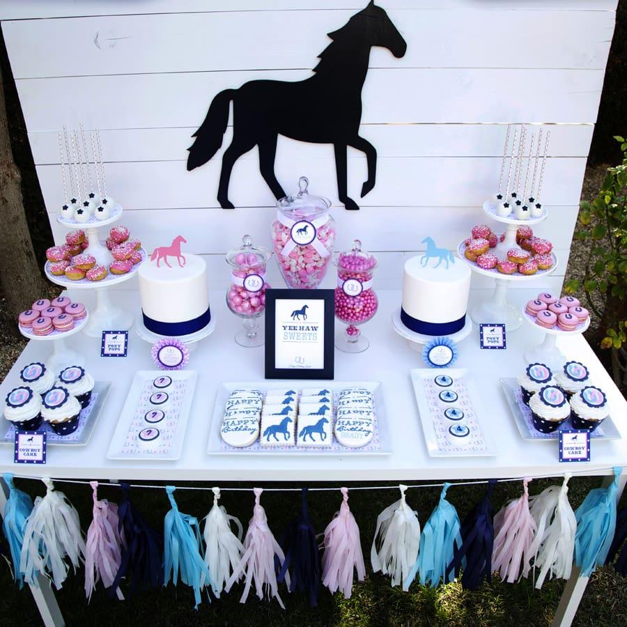 Adorable preppy pony birthday party!