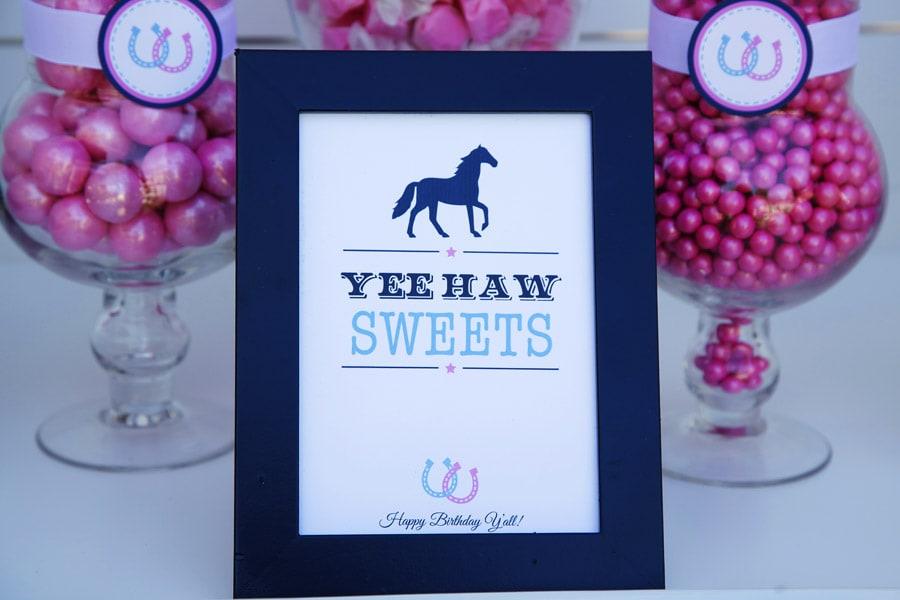 Cute Preppy Pony Party Ideas