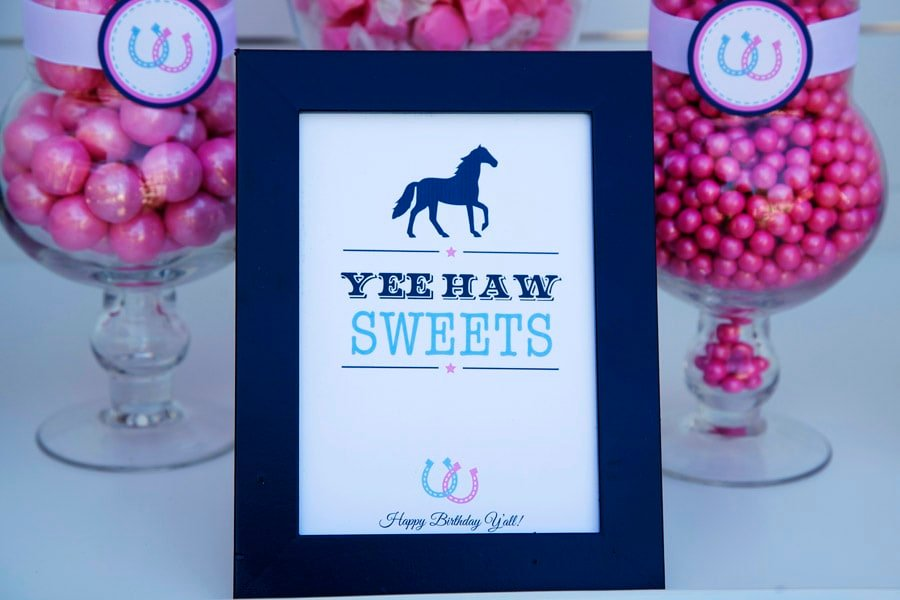 Cute Preppy Pony Party Ideas