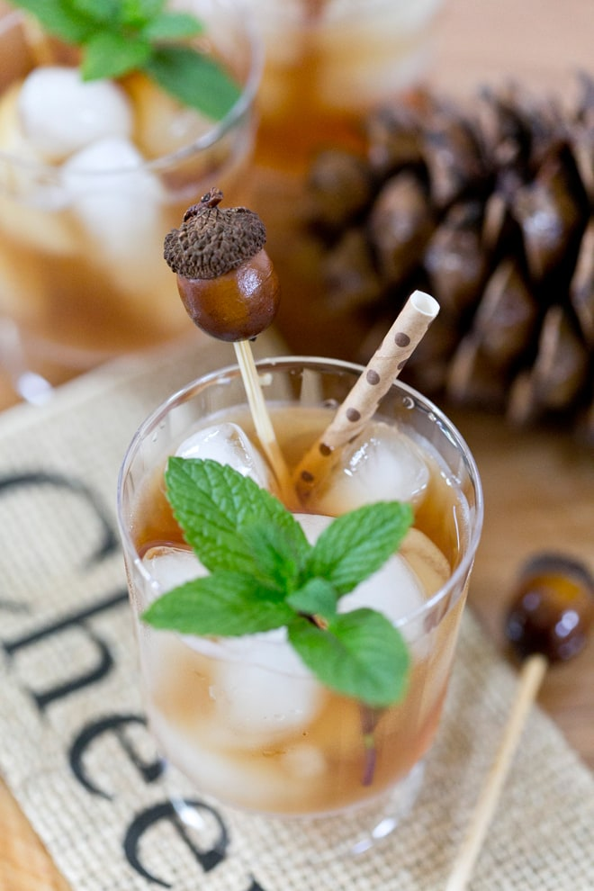 Tutorial: How to make easy DIY Acorn Drink Stirrers! Pizzazzerie.com