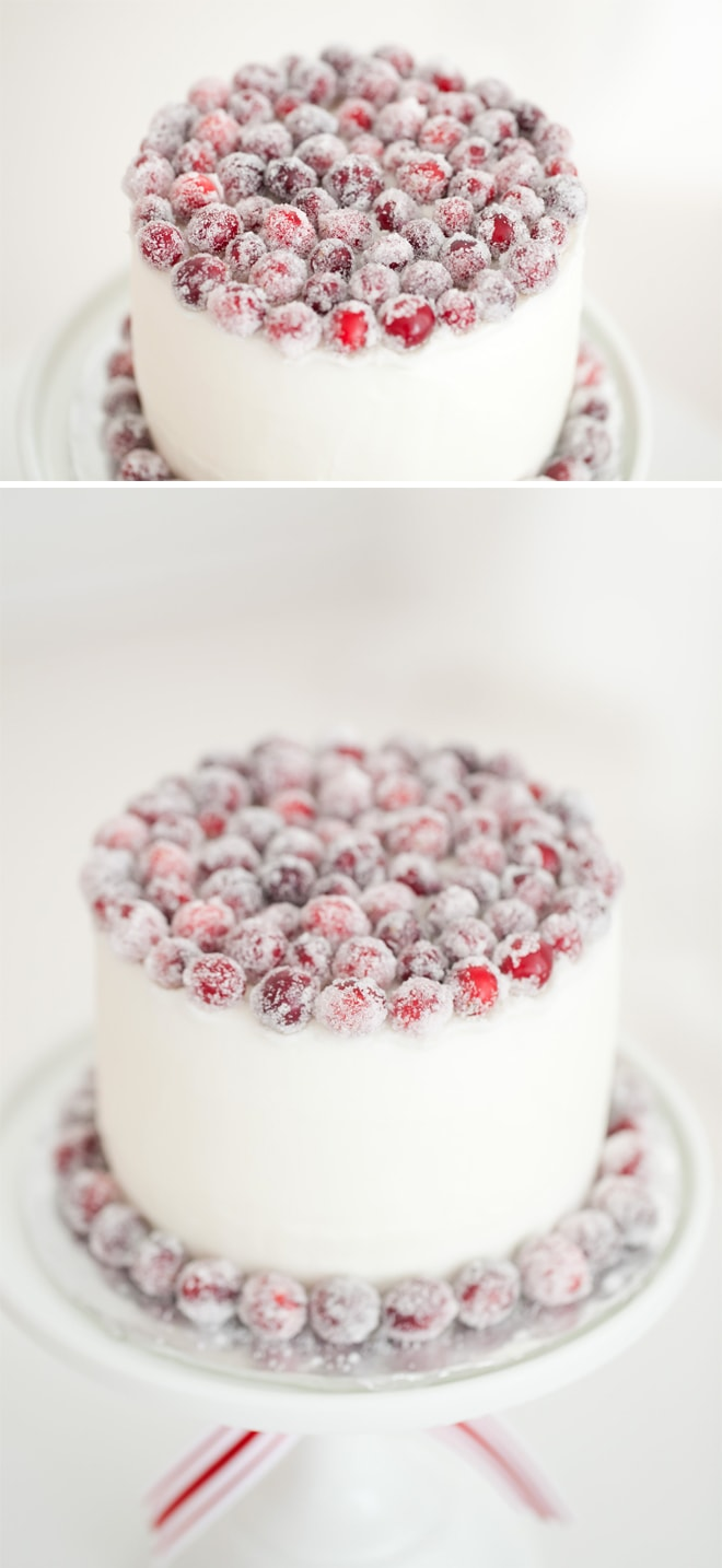 Gorgeous sugared cranberry Christmas cake!